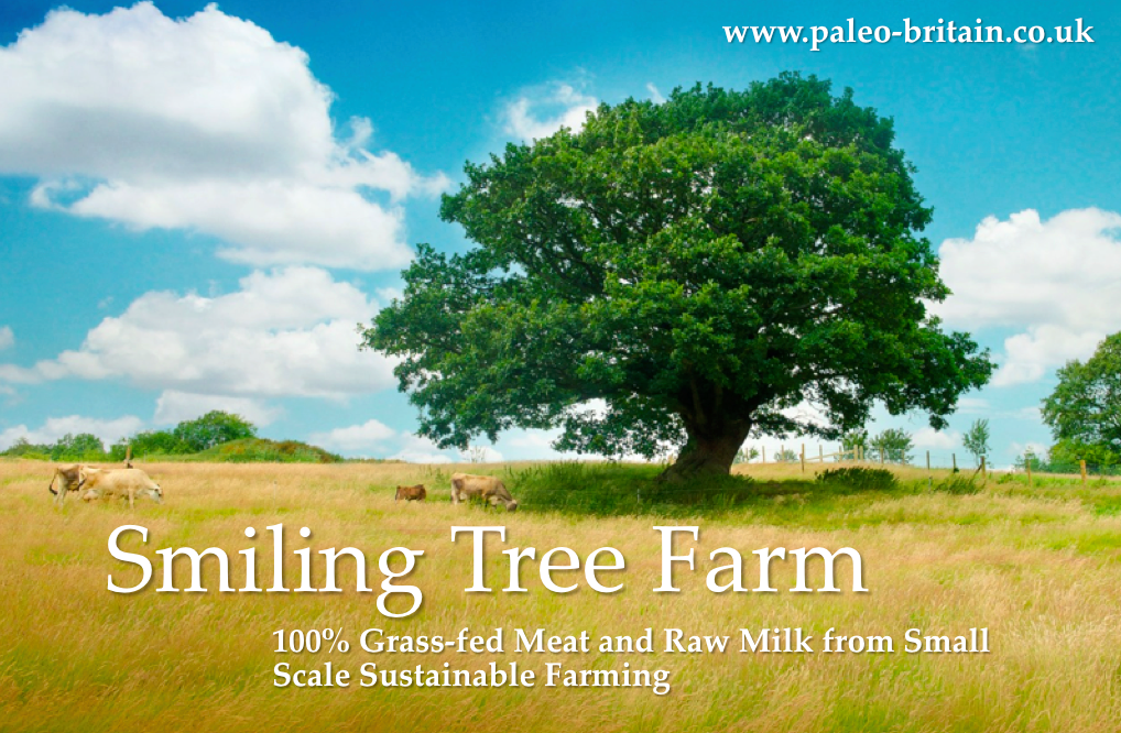 100% Grass-fed Meat & Raw Milk from Small-Scale Sustainable Farming