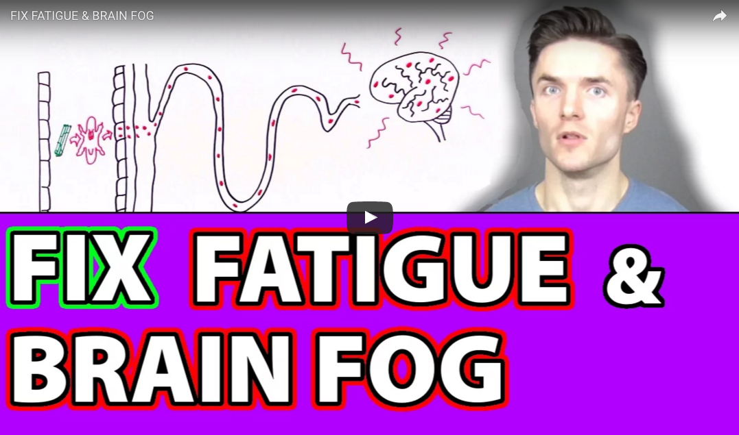 How The Gut Can Affect Mental State, Including Brain Fog and Fatigue