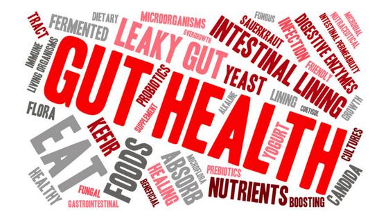 Ultimate Gut Health Resource – Probiotics, Prebiotics & More